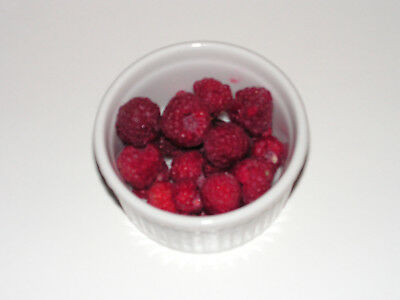 10x  Barerooted Raspberry canes plants fruit berries for your garden