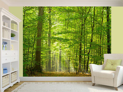 Wall mural photo wallpaper Black /& white forest scenery treeglue not included
