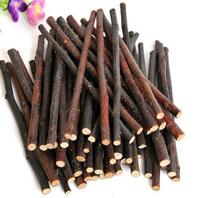 Apple Wood Chew Sticks Twigs for Pets Rabbit Hamster Guinea Pig Parrot Toy Eager