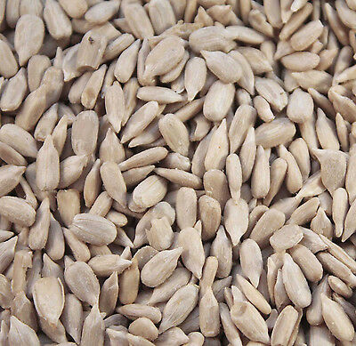 Maltbys' Stores 1Kg Sunflower Hearts For Wild Birds By The Uk's Trusted Brand Si