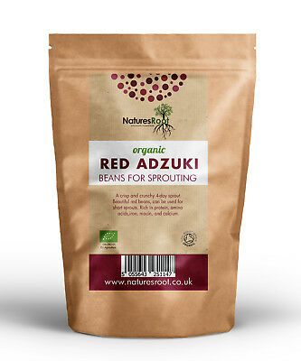 Organic Red Adzuki Beans - Use in Cooking | Sprouting Seeds | Growing Sprouts