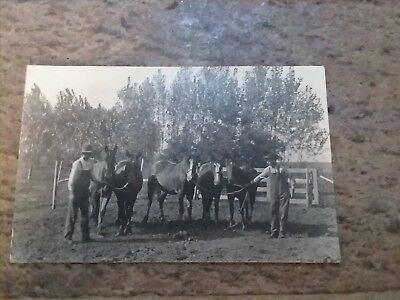 Vintage Real Photo Postcard Two Farmers and Five Horses