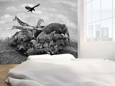 Wild Animals And Birds black and white photo Wallpaper wall mural (23042488)