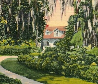 Brookgreen Gardens historic place landmark rice plantation SC Vintage Postcard