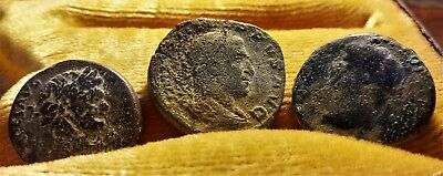 Lot Of 3 Large Bronze Philippus And Domitian Roman City Coins //38