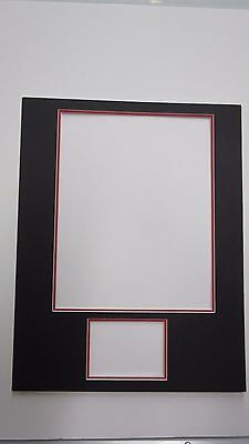 Picture Frame Mat 11x14 For 8x10 Photo And 2x425 Exact Set Of 5