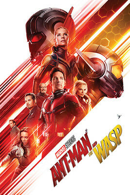 Ant-Man and The Wasp (One Sheet) Maxi Poster - 61cm x 91.5cm - PP34384 - 427