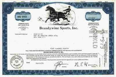 Brandywine Sports Inc. 1978 Wilmington Delaware Horse Racing Pferdesport Sulky