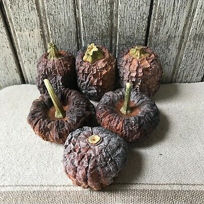 Primitive Set Of 6 Dried Real Baby Pumpkins Harvest Halloween Fall Bowl Fillers