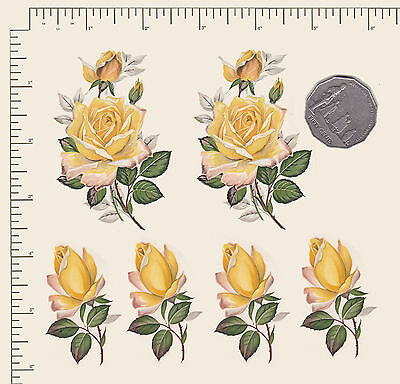 6 x Yellow roses, rose-buds buds Floral Waterslide ceramic decal.decoupage PD951
