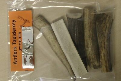 5 X Antlers For Dog Chews Value Pack Reed Deer 100% Natural