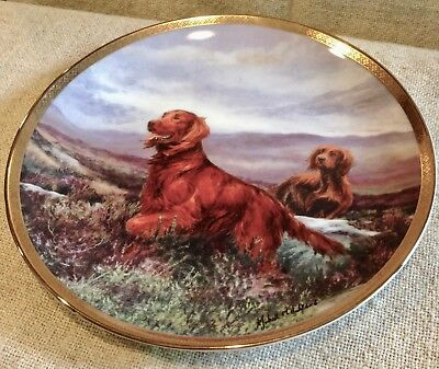 Collector Plate Irish Red Setter Catching The Scent Royal Doulton Bone China New