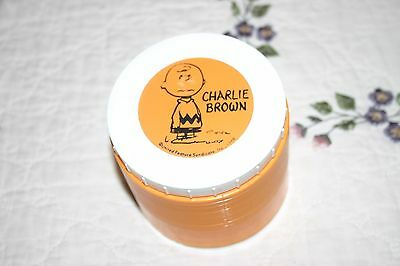 Vintage Orange 1969 Charlie Brown Thermos Insulated #1155