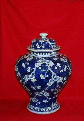 Antique Chinese Porcelain Large Prunus Blossom Covered Jar Qing Dynasty
