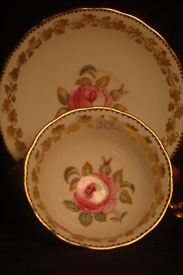 Royal Chelsea Gold with Roses Cup and Saucer