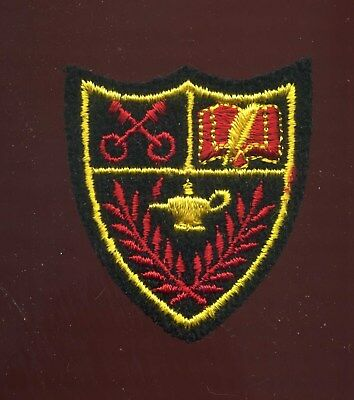 Unknown Crest Patch School or City Emblem?
