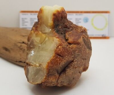 Stone Raw Amber Natural Baltic Genuine 129,4g Butterscotch Vintage White H-055