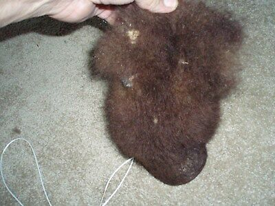 bison scrotum real buffalo Ball bag oddity nutsack gag gift  WINTER BAG art  C5