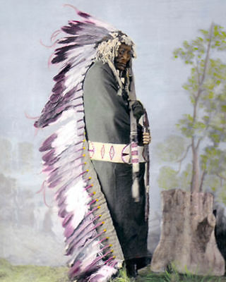 "Iron Shell Native American Indian Brule 1872 8X10"" Hand Color Tinted Photograph"