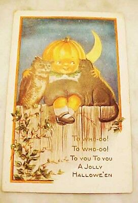 1919 Halloween Postcard With Owl, Black Cat And Pumpkin Head Boy