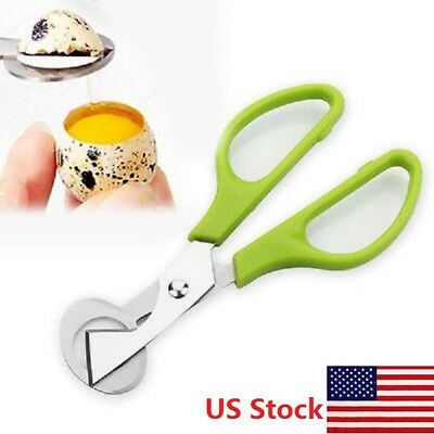 Pigeon Quail Egg Scissors Cracker Opener Cigar Cutter Stainless Steel Tool US