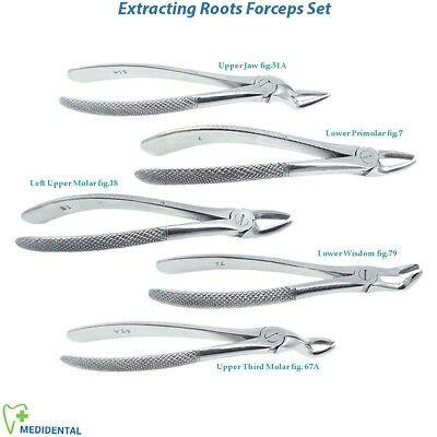Extracting Forceps Lower Upper Molar Surgical Tooth Extraction Serrated Root Tip