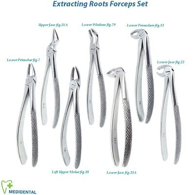 Surgical Oral Surgery Extracting Tooth Forceps Lower Upper,Left Right Molars New