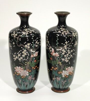 Pair of Japanese Meiji Period Cloisonne Vases Decorated with Blossom & Birds.