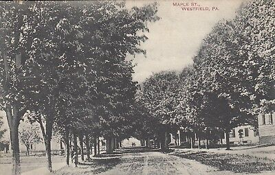 1909 Maple Street In Westfield, Pennsylvania/PA