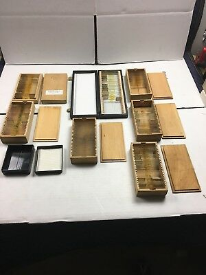 Vintage Prepared Microscope Slides- Lot Of 7 Boxes