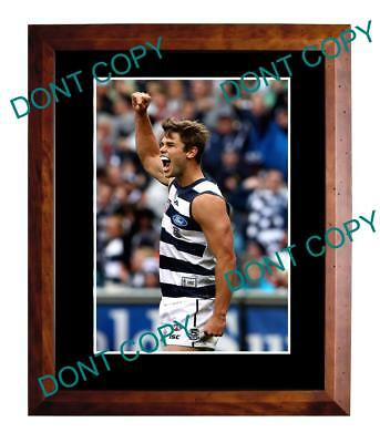 Tom Hawkins Geelong Cats Fc 2011 Premiers A3 Photo 1