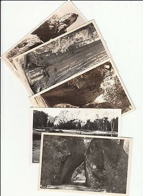 Lot of 5 Yosemite National Park California Vintage Era B/W RPPC Postcards