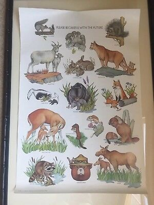 Smokey Bear Educational Poster - Vintage - Forest Animals - Dept of Agriculture