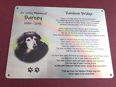 Rainbow Bridge Pet memorial, with photo, metal plaque, cat, dog, horse etc.