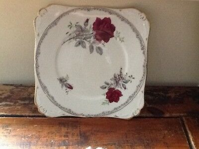 Royal staffordshire sandwich/tea plate with roses and gold rim.