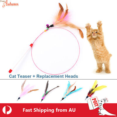 Cat Toy Feather Teaser Wand Interactive Stick Kitten Pet Fun Wire Beads