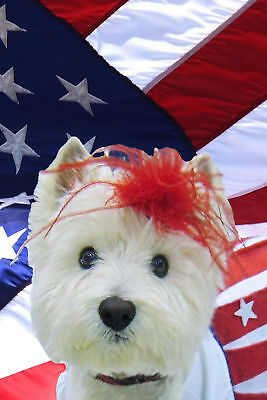 Westie American Beauty  Garden Flag  Rescue Free Ship Usa