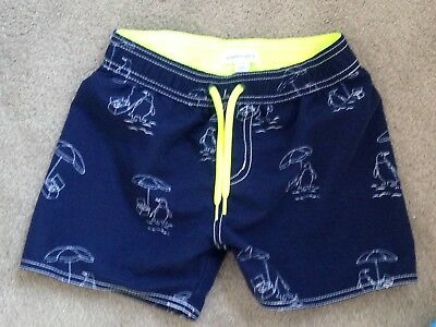 Pumpkin Patch Board Shorts Size 4