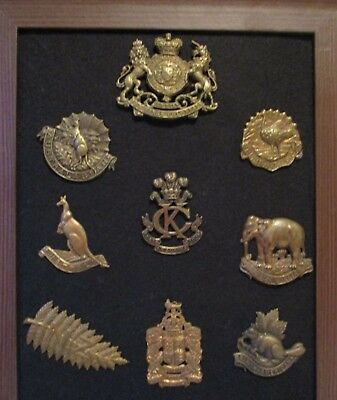 New Zeland Fern  & Kings Colonial  / Colonial  Badges