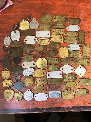 HUGE Antique Vintage Dog Tax Tag Lot Of About 62