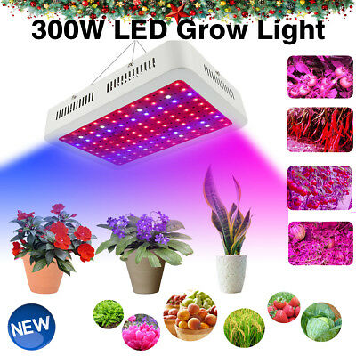 Led Grow Light Lampara Crecimiento de Plantas Cultivo Interior Iluminacion 300W