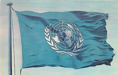 New York City, NY, Flag of the United Nations, Chrome Vintage Postcard d6489