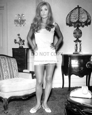 Actress Sharon Tate - 8X10 Publicity Photo (Ab-068)