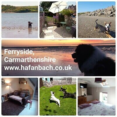 Last minute holiday cottage, dog friendly - 17 May, Carmarthenshire, Wales