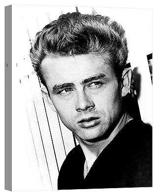 quadro james dean Stampa su tela Canvas effetto dipinto