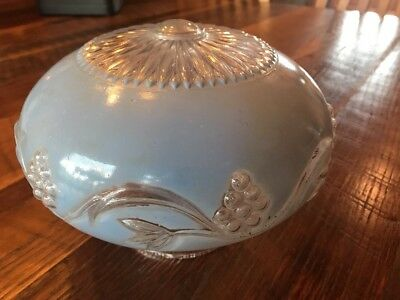 Vintage Sky Blue Frosted Glass Grape Vine Ceiling Mount Light Shade Globe Cover