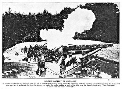 "1915 World War I Belgian battery of Artillery photo print 10.5"" x 7.75"""