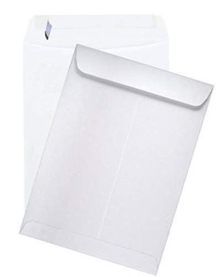 Econo Peel to Seal Catalog Envelopes 28lb White Wove 9-x-12-500-pk - Shipping en