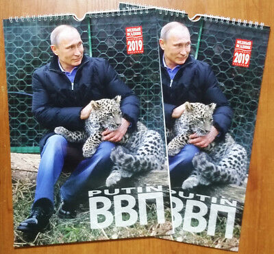 Lot of 2pcs: wall calendar 2019 `Putin & Persian leopard` in English and Russian
