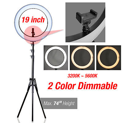Lusana Studio LED Ring Light 5500K Dimmable & Stand Lighting Kit Youtube Live